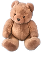 Noshie Bear with tb.png