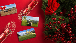 Christmas Offers at Foylehov