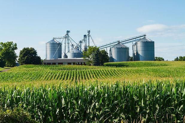 agronegocio-o-que-e-agroindustria.jpg