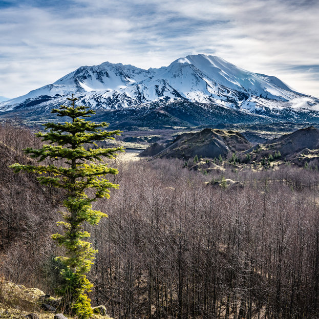 Mt.St Helens-Washington