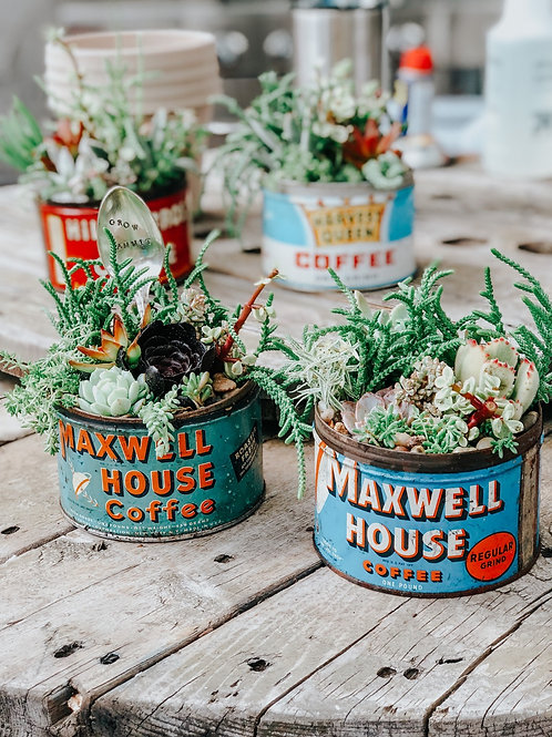 Vintage Coffee Can w/ Succulents