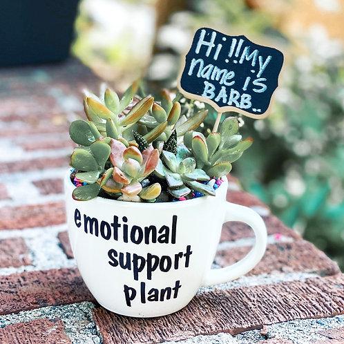 """Say It "" succulent custom mug"