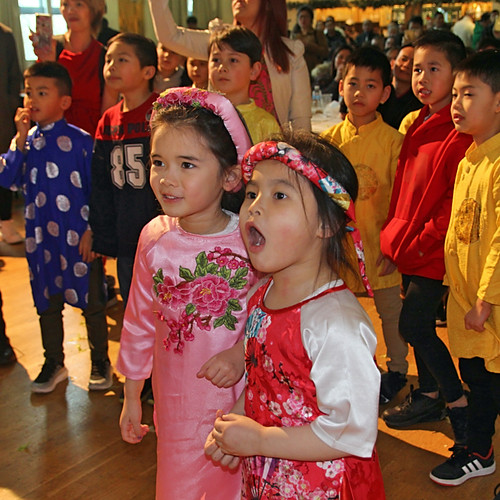 Vietnamese New Year party