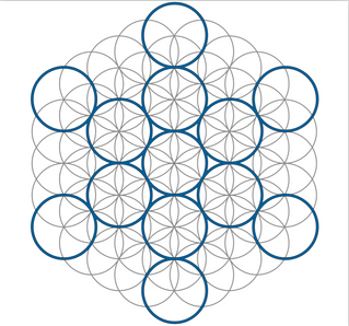 Free Vector Image- Flower of Life - Fruit