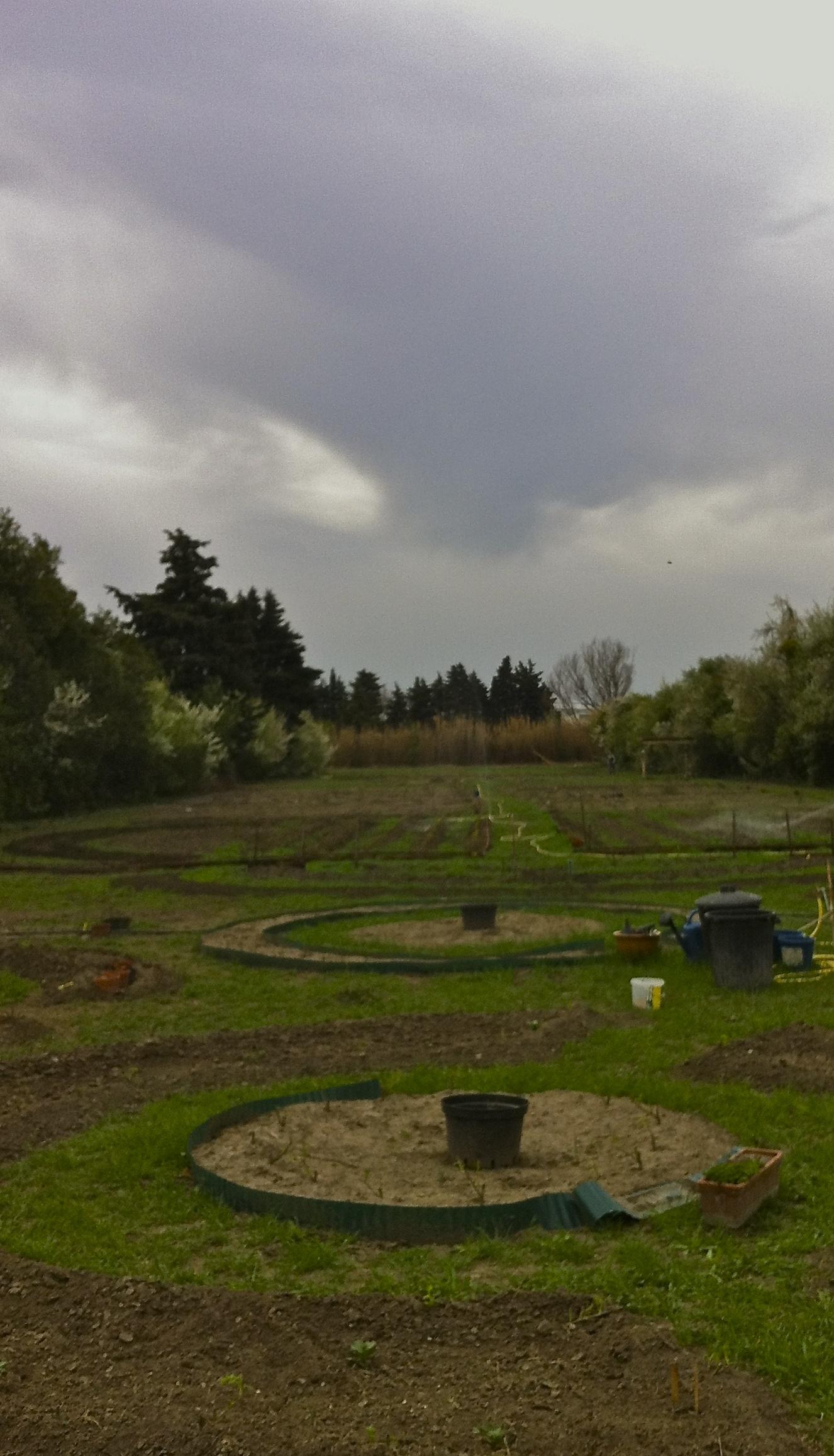 Creation-jardin.jpg