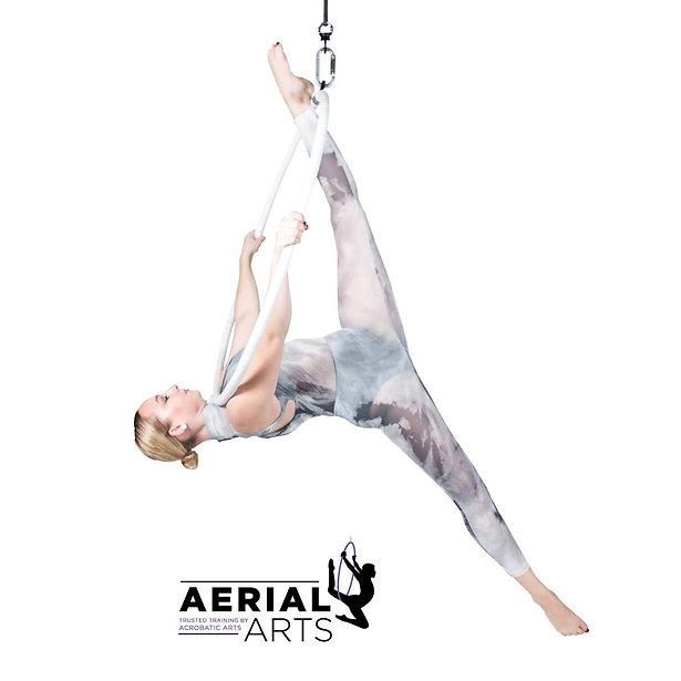 Aerial Arts marketing image 2.jpg