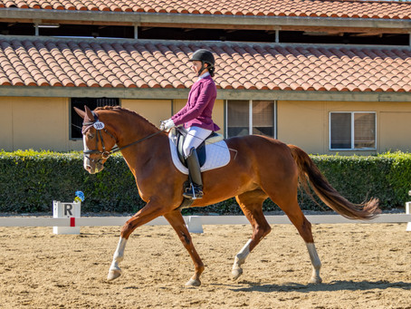 Dressage Rider Leg Position - It's All In the Hips