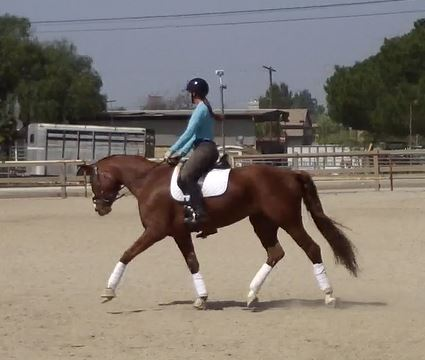 Stella and Laura Schooling