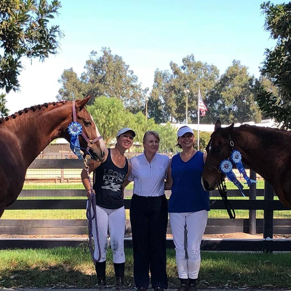Dressage horses and first place blue ribbons at Mission Pacific Dressage Show.