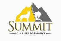 SummitJPLogo.JPG