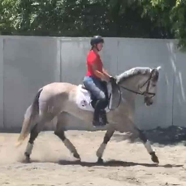Sofi - third ride