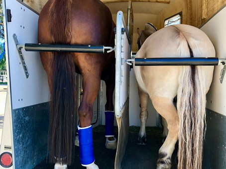 October Dressage Show at Mission Pacific Equestrian Centre