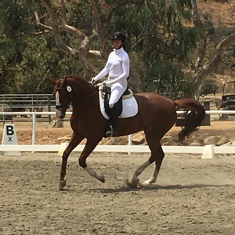 Dressage Horse, Laura Goodenkauf Dressage, Los Angeles, CA