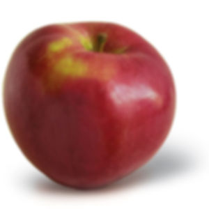 Acey Mac.jpg