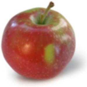 Jersey Mac.jpg