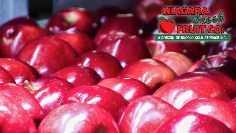 Apples close-up | Niagara Fresh Fruit