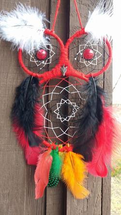 Owl - Blackhawks
