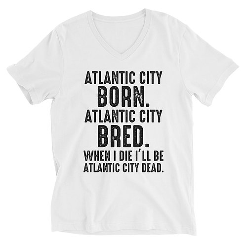 Atlantic City Mayor Small Light Unisex Short Sleeve V-Neck T-Shirt
