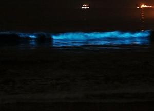 A imagem mostra o mar a noite, em que uma onda com bioluminescência azul está quebrando na praia. Ao fundo da imagem, há duas embarcações.