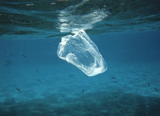 Imagem mostrando uma embalagem plástica flutuando no fundo do mar. Ao fundo podemos ver alguns peixesd