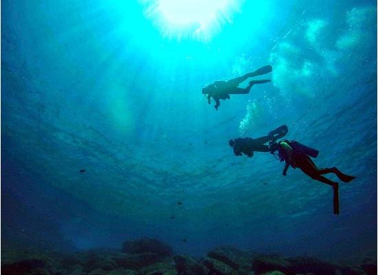 Imagem com uma visão debaixo para cima no oceano de três mergulhadores.