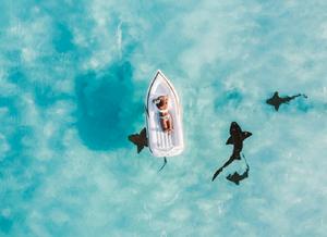 Imagem vista de cima de um barco com uma pessoa em cima rodeada por quatro tubarões.