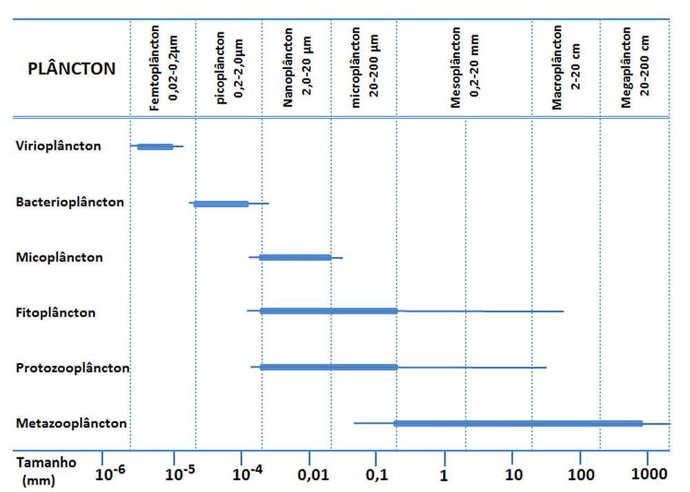 Gráfico mostrando a classificação do plâncton. Do lado esquerdo há os tipos de plâncton: virioplâncton, bacterioplâncton, micoplâncton, fitoplâncton, protozooplâncton e metazooplâncton. No eixo X temos os tamanhos, e acima temos a classificação em femto, pico, nano, micro, meso, macro e megaplâncton.