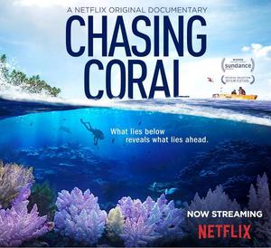 Capa do documentário Em busca de corais da Netflix. Nele mostra na parte inferior um mergulhador embaixo doa água e vários corais ao seu redor. Acima há um barco com duas pessoas e uma vegetação do lado esquerdo.