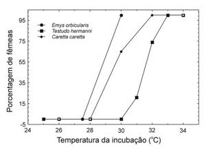 Imagem de um gráfico mostrando a porcentagem de fêmeas no eixo Y e a temperatura de incubação em graus Celcius no eixo X. Há resultados de três espécies, Emys orbicularis, Testudo hermanni e Caretta caretta.