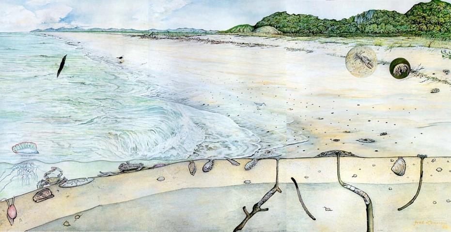 Foto mostrando a esquerda o mar, seguido da praia e mais a direita uma vegetação arbórea. Ao longo de toda a extensão há desenhos de animais que habitam esses três ambientes.