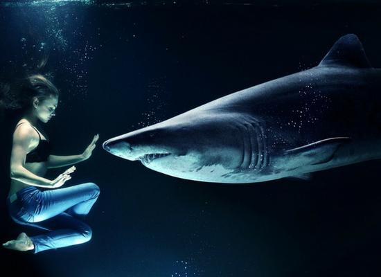A esquerda uma mulher em posição sentada com as mãos erguidas na altura do peito em sinal de 'pare' para um tubarão que esta na frente dela.