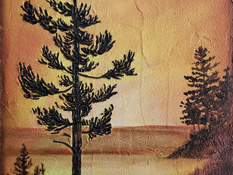 The Making of Pines at North Pond