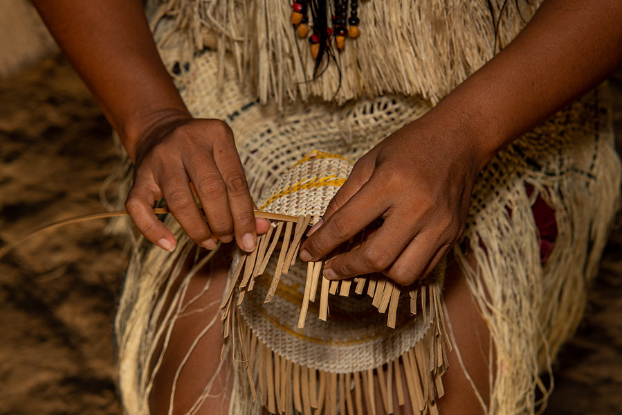 Hands of indigenous woman from the Huitoto tribe of the Colombian Amazon making traditiona...ket.jpg