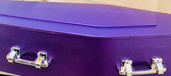 Purple coffin with silver handles