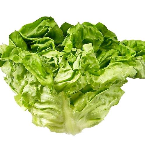 Lettuce Alive