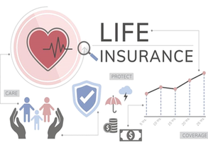 Life insurance assets and  the US economy