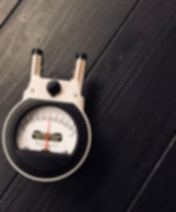 Nervoscope, gonsead chiropractic, technology