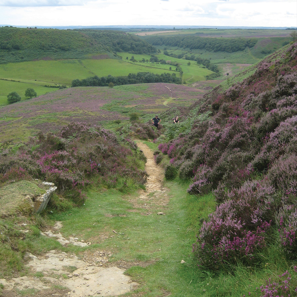 Walking at the Hole of Horcum, North York Moors National Park