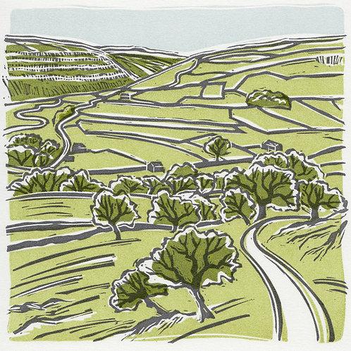 Littondale, Yorkshire Dales original linocut print