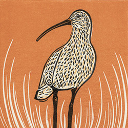 Curlew linocut print