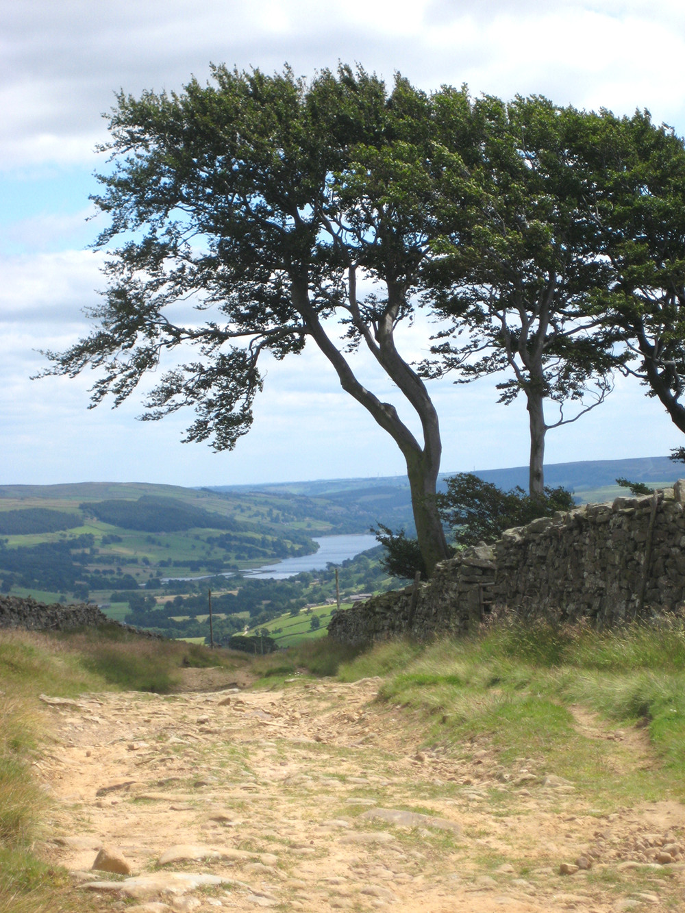 View to Gouthwaite Reservoir, Nidderdale, North Yorkshire