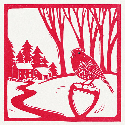 Pack of 4 greetings cards - Christmas Robin