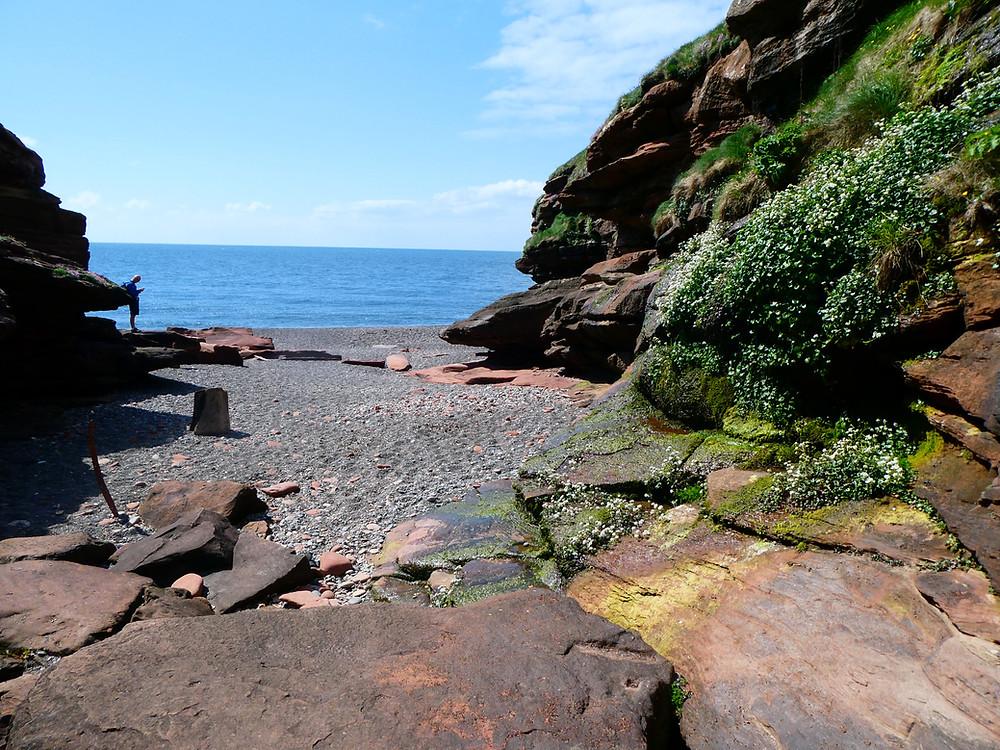 Fleswick Bay