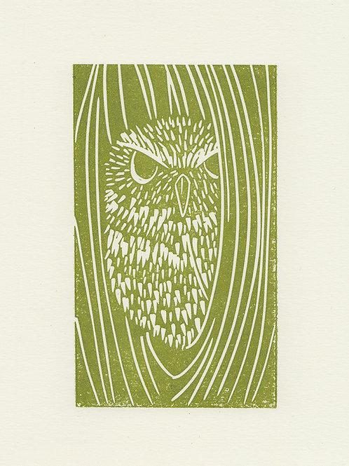 Little Owl, original linocut print - Green