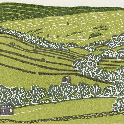 Swaledale, Yorkshire Dales original linocut print - olive green
