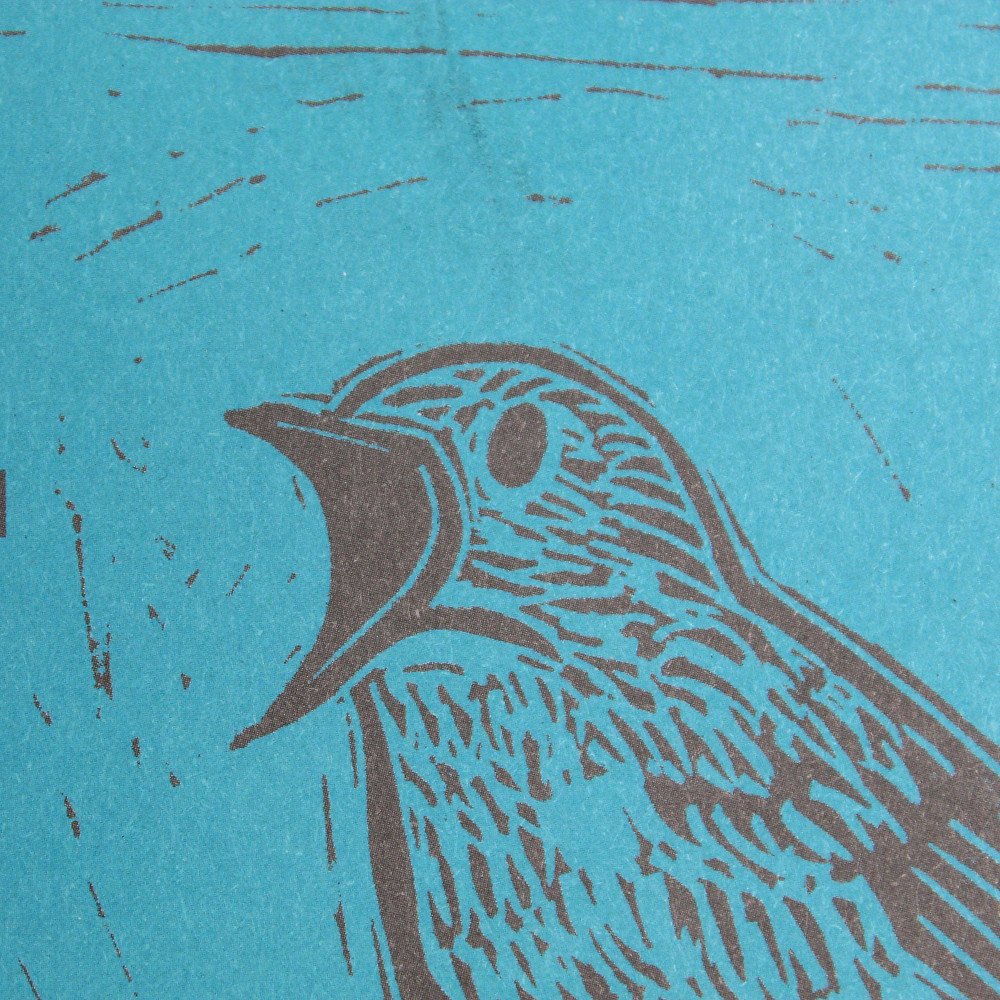 Close up detail of nightingale bird linocut illustration for National Trust's place, Sutton Hoo