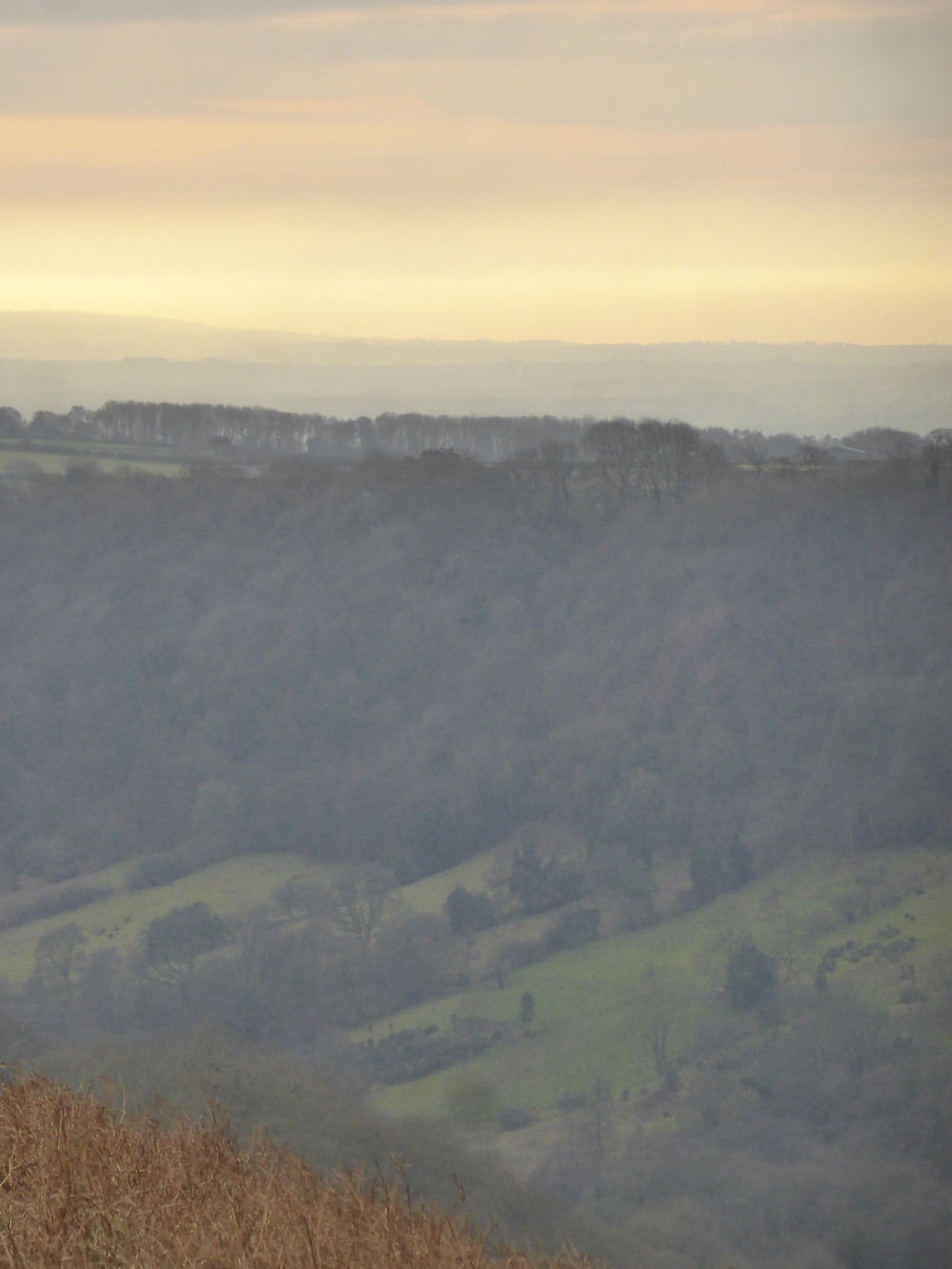 Layers and trees in the distance, Hole of Horcum, North York Moors National Park