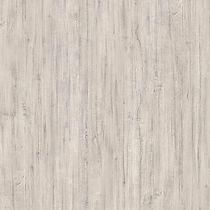 White Driftwood - web.jpg