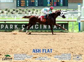 Ash Flat2 7.22.21.jpg