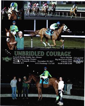 Courage1.jpg